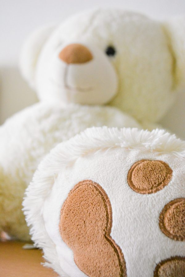white-and-brown-bear-plush-toy-selective-photo-754178